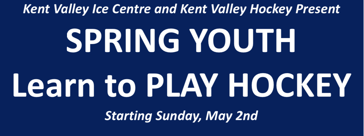 Spring Youth - Adult Learn to Play Hockey
